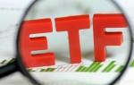 Инвестирование в ETF фонды: правила, особенности, размер прибыли