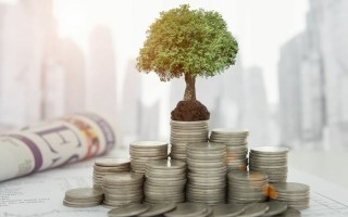 Как инвестировать с максимальной выгодой – ТОП-5 высокодоходных облигаций