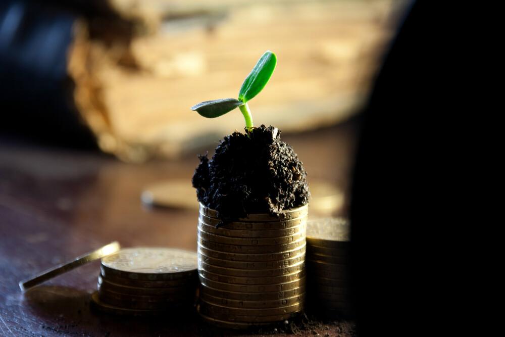 Рост доходности акций